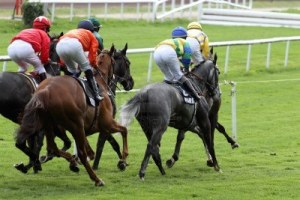 9282011-details-of-a-horse-racing