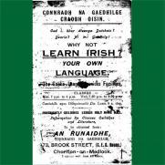 Learn Irish square_0