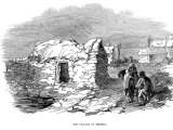 Irish Famine Eviction Project