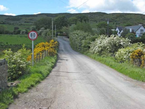 The_Border_on_Killeen_School_Road_-_geograph.org.uk_-_446719