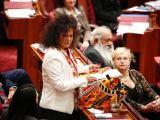 Proud Irish Aboriginal Senator gives MaidenSpeech