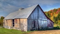 old-barn-feature_Geoffrey-Coelho.jpg