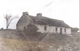 irish-cottage-on-bakers-flat-in-the-19th-century