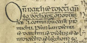 23_p_26_f.39r_book_of_fenagh_-_copy
