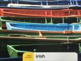 Irish English – a threatenedspecies