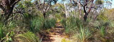 Warren Conservation Park - National Parks South Australia